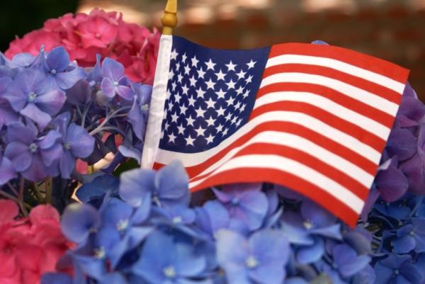american flag with hydrangeas