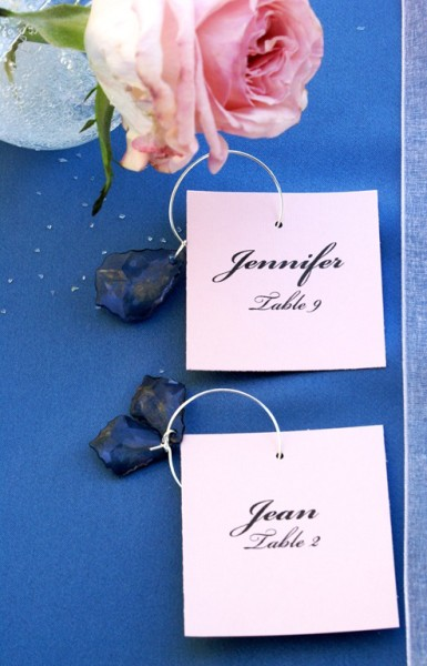 vineyard wedding cookie favors