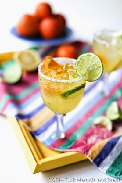 Fresh Fruit Margarita-6694