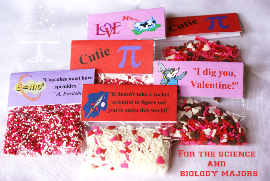 Collegiate Valentine Care Package DIY Cupcakes Sprinkle Packs
