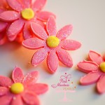 Fabulous Fondant Daisies at Framed Frosting