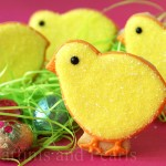 Decorated Chick Cookies!