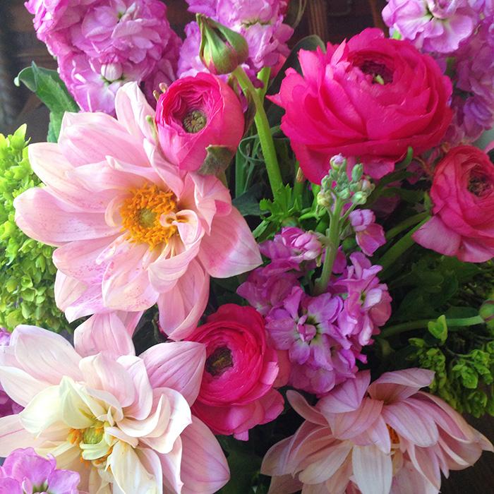spring flowers 700