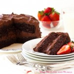 """The Best Ever – Blue Ribbon Winning – Chocolate Layer Cake – In All The Land""!"